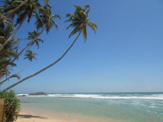 beach galle