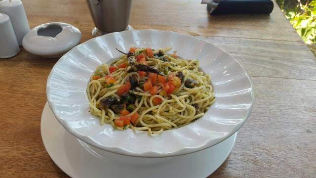 Spaghetti + Oilive Oil + Garlic+ Coriander