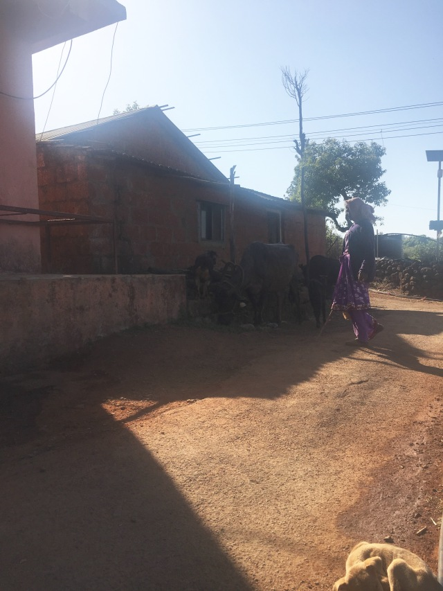 Farm Village India
